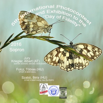 5th International Photocontest and Exhibition to the Day of Fidelity képe